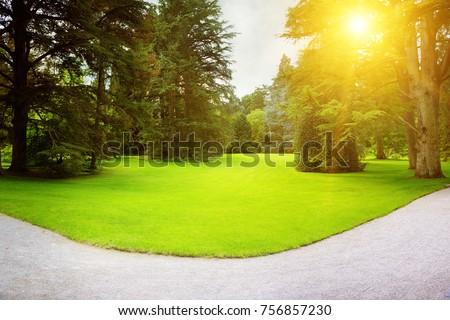 Sunrise in the beautiful park #756857230