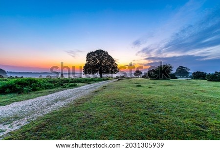 Sunrise in the bosom of nature. Morning dawn. Dawn in the countryside. Sunrise rural road