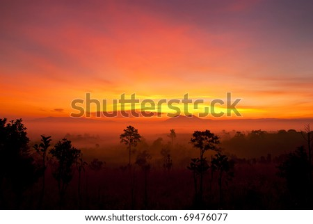Sunrise in Tung salang luang