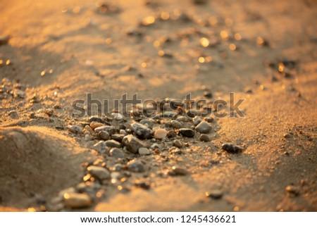 sunrise light on  sand small depth of focus #1245436621