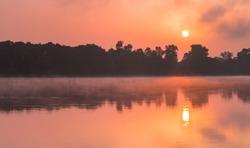 Sunrise mist in Loire river in La Chapelle-aux-Naux village of Indre-et-Loire Department of The Loire Valley in France, Europe, Unesco World Heritage Site