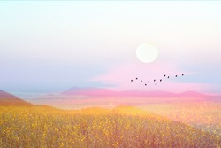 sunrise on morning pastel sky over hill and the mountain and silhouette bird flying