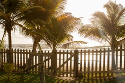 Sunrise or sunset on the beach with waves and ocean. picket fence with sun and shadows. Beautiful outdoor scene with coconut trees swaying. Sunlight and shadows.