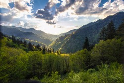 Sunrise over a beautiful forest mountain landscape in the Great Smoky Mountains National Park in Gatlinburg, Tennessee