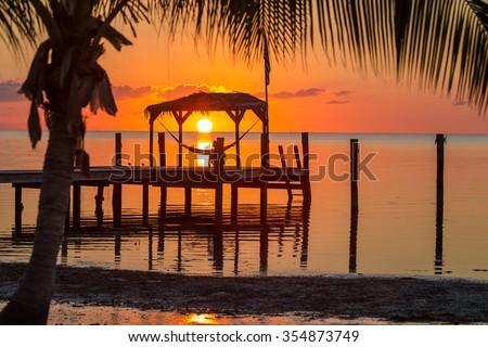 Sunrise over a hammock in Key West, Florida #354873749
