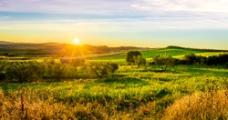 Sunrise over green tuscan hills in Italy