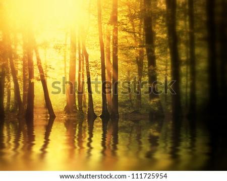 Sunrise over lake in autumn forest. Tilt-shift view.