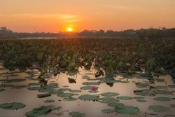 Sunrise over Shady Camp Billabong, Mary River, Darwin, Northern Territory, Australia.