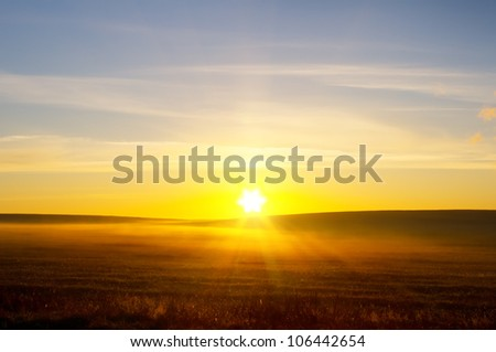 sunrise over summer field. Nature composition.