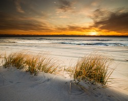 Sunrise over the Atlantic coast on Long Beach Island, NJ in late November with a sandy beach and tufts of grass in the foreground