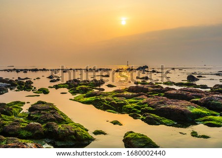 Sunrise over the sea at Cheongsapo Port near Haeundae-gu, Busan, Korea. Green laver and seaweed are stuck on the low tide rocks. Photo stock ©
