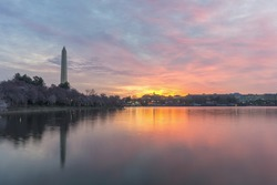 Sunrise over the Tidal Basin and Cherry Blossoms