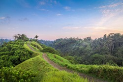 Sunrise sky over the serene Campuhan Ridge, a popular morning walk in Ubud, Bali, Indonesia.