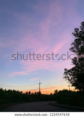Stock Photo Sunrise sky unicorn color with silhouette tree and electric pole , curve concretes road and footpath
