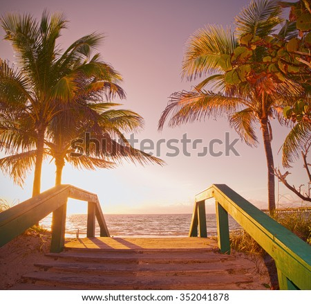 Sunrise summer scene in Miami Beach Florida with a path going to the ocean and beautiful palm trees, Instagram desaturated filter for retro looks