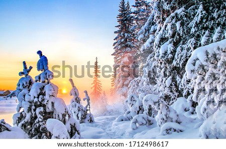 Sunrise winter snow forest scene. Winter forest sunrise scene. Winter snow sunrise scene. Forest snow in winter sunrise