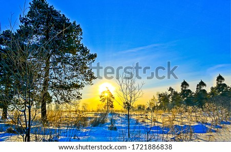 Sunrise winter snow nature landscape. Winter snow sunrise scene. Winter sunrise snow scene