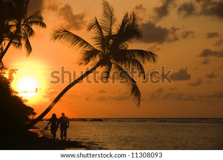 Sunrise on The Beach With Palm Trees Sunrise With Palm Tree on a