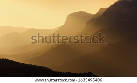 Photo of  Sunrise with the fog. Neutral screensaver.