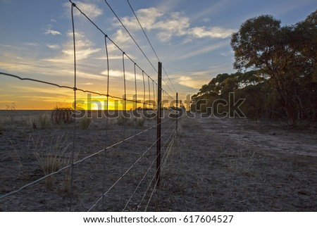 Sunrise with wire fence in foreground. Little Desert National Park, Victoria, Australia