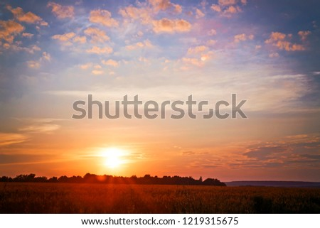 Sunrises and sunsets. Beautiful countryside. Field. Morning and evening. #1219315675