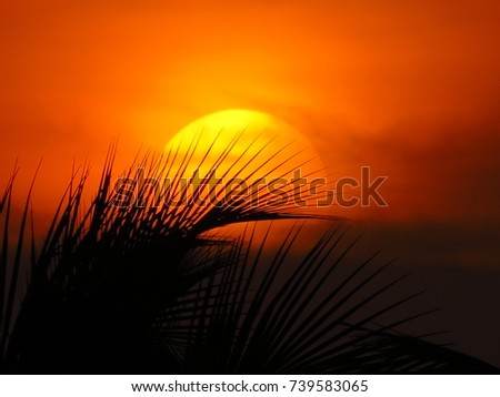 sunset #739583065