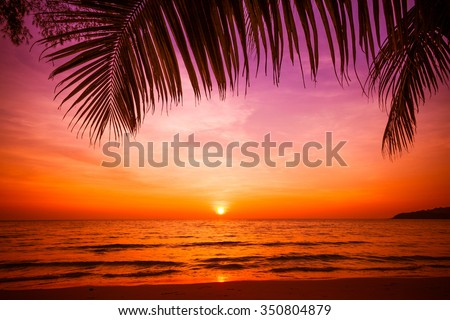 sunset and beach.  Beautiful sunset above the sea #350804879