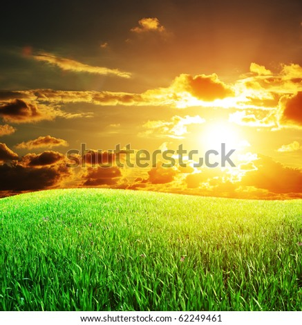 Sunset and big green meadow. Nature composition. - stock photo
