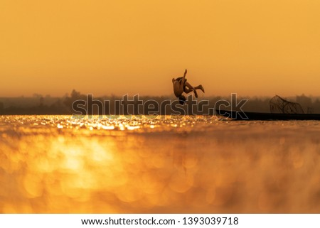 Sunset and bokeh wit child swimming somersault in the lake thailand. #1393039718