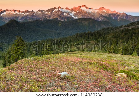 Sunset and mountains in the meadows
