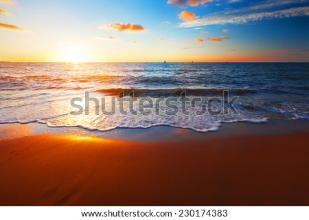 sunset and sea #230174383