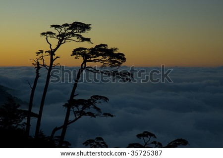 Sunset and Sea of Cloud, Southern Cross-Island Highway, Taiwan