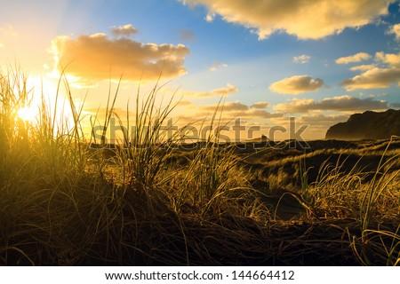 Sunset at Karekare Beach, North Island, Auckland, New Zealand