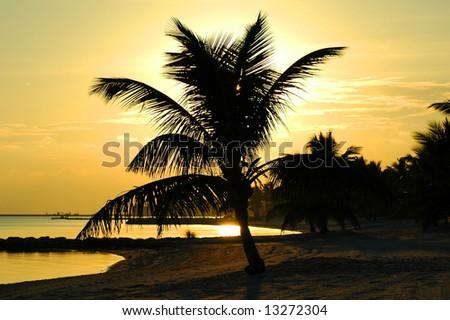 Sunset at Key West islands, Florida. USA