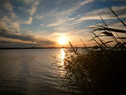 Sunset at lake with windy reed and waves