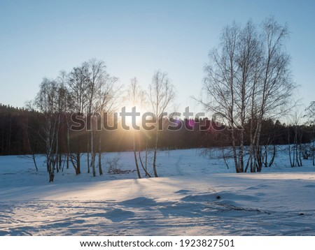 Sunset at snowy winter landscape with snow-covered field and birch tree and forest against daylight, Contre-jour, lense flare. Nature landscape background. Photo stock ©