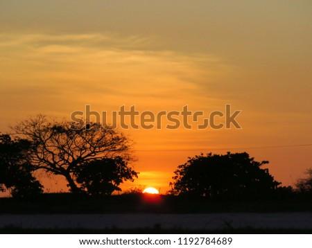 sunset backwoods brazil Foto stock ©
