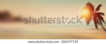Sunset banner background. Tropical beach with coconut palm tree.