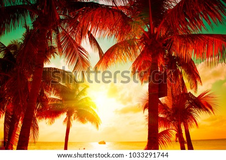 Sunset Beach with palm trees and beautiful sky landscape. Travel, Tourism, vacation concept background. Mexico. Paradise scene of Caribbean Island. Beautiful coconut palms silhouettes over orange sun