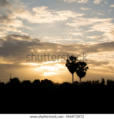 Sunset beautiful light with mountain background #466872872
