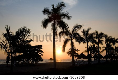 Sunset behind palm trees on an El Salvador beach