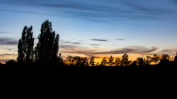 Sunset, dusk, in a park with trees, and an orange and dark blue moody sky