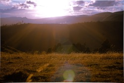 sunset goldenhour in the mountain grass in the field