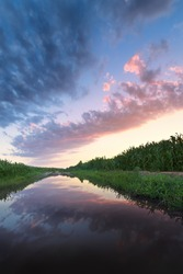 sunset in a field after a heavy rain / bright summer photo Ukraine