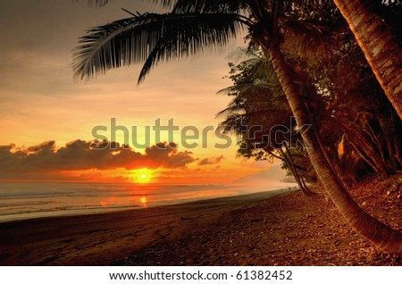 Sunset in a virgin beach of Corcovado National Park in Costa Rica