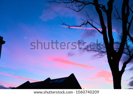 Sunset in blue and pink, with the silhouette of a house and a tree, con trails glow a hot pink in a powder blue sky with room for your text and the crescent moon glows              #1060740209