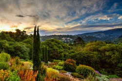 Sunset in botanic garden, Dunedin, South island of New Zealand