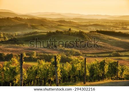 Stock Photo Sunset in Chianti