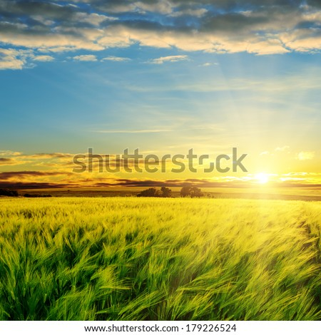 sunset in clouds over green field