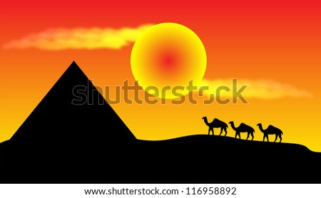 Sunset in desert with camels and pyramid
